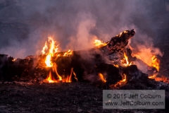 Controlled Burn - Fire0055