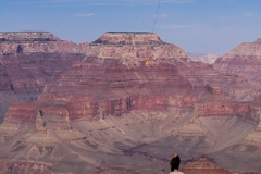 Body being removed from Grand Canyon, Condor in foreground - GC1232