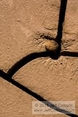 Rock in Mud - MUD0072
