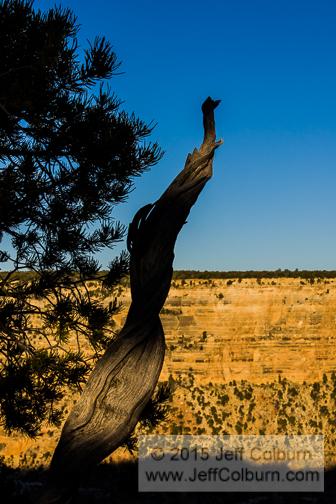 Grand Canyon - GC0184
