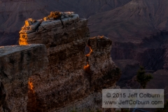 Grand Canyon - GC0890