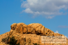Rock in Repose - GDEL0249