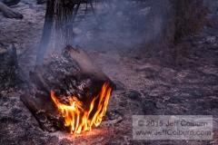 Controlled Burn - Fire0049